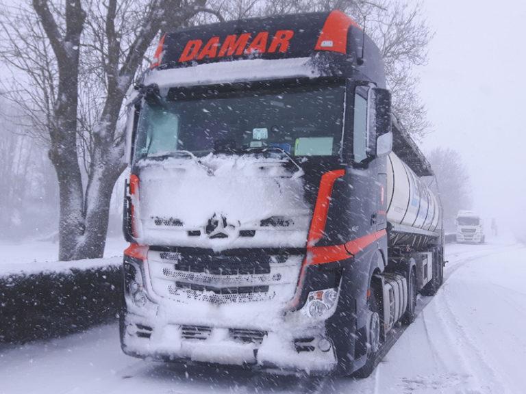 Damar-Winter